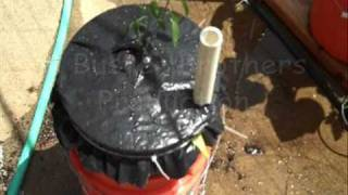 PLANT a Global Bucket (similar to Earthbox®)