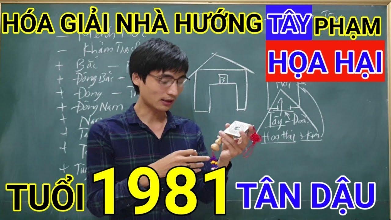 Tuổi Tân Dậu 1981 Nhà Hướng Tây | Hóa Giải Hướng Nhà Phạm Họa Hại Cho Tuoi Tan Dau 1981