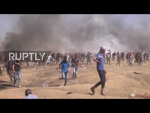 State of Palestine: Death toll rises above 50 amid Gaza protests - Gaza HealthMin