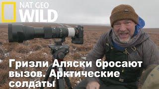 Nat Geo Wild: Гризли Аляски бросают вызов. Арктические солдаты / Alaska's Grizzly Gauntlet