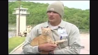 Prisoners and their cats.