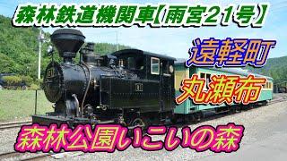 森林鉄道蒸気機関車 「雨宮21号」Forest Railroad SL「Amemiya21」