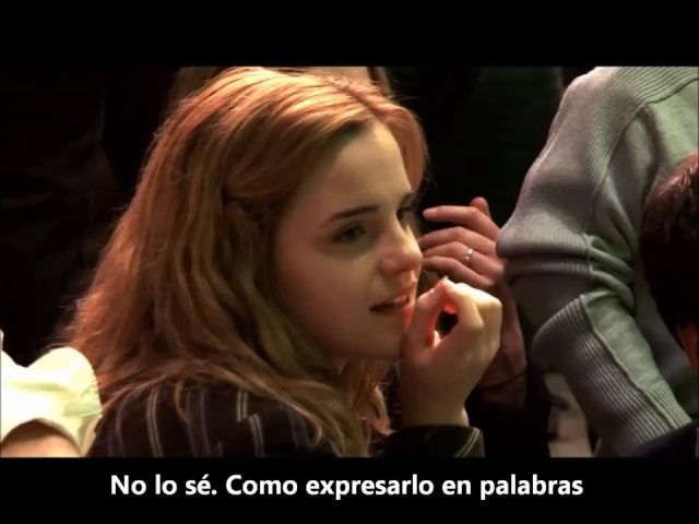Harry Potter Last Day Subtitled in spanish
