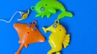 REINO ANIMAL: ANIMAIS MARINHOS, GOLFINHO, CAVALO MARINHO, ARRAIA, LET'S GO FISHING
