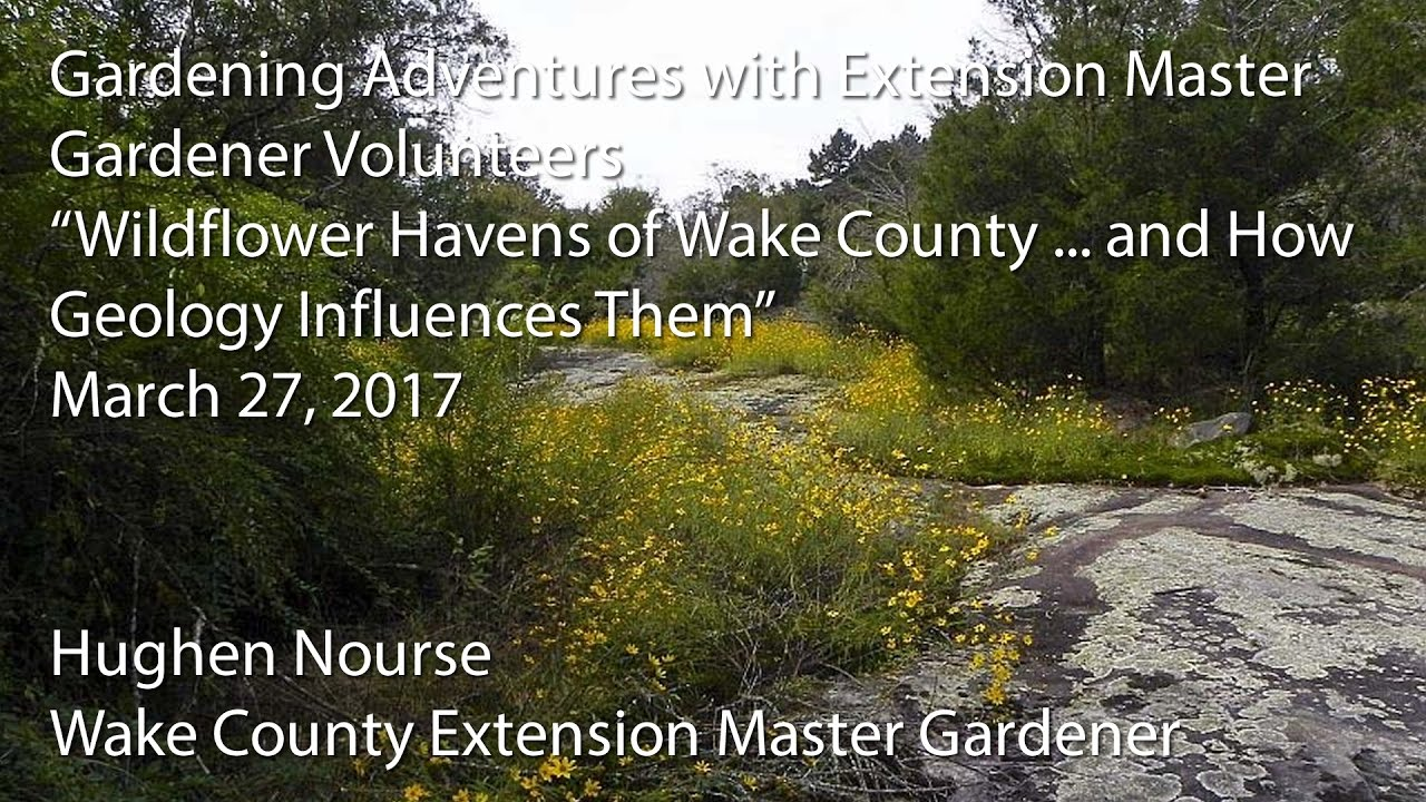 Wildflower Havens Of Wake County And How Geology Influences Them