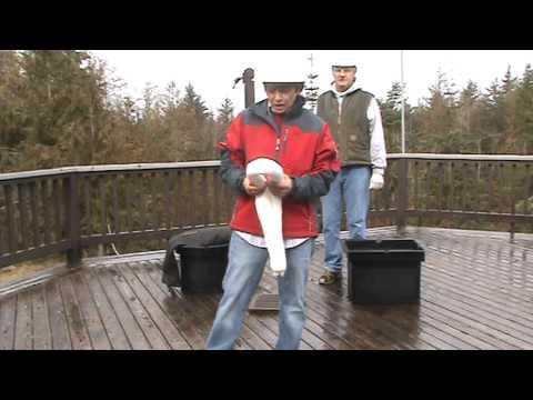 Sea Life Saver Training Video 2