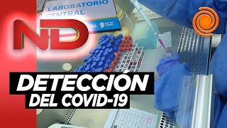 Así se detecta el coronavirus en Córdoba: el paso a paso
