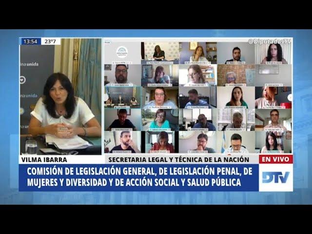 """Vilma Ibarra: """"Ha fracasado la política de penalizar a la mujer que interrumpe su embarazo"""""""