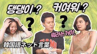 한국인들만의 비밀을 공개해서 죄송합니다..ㅋㅋ
