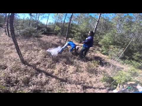 Big Thicket Tree Planting, SCA Houston, MLK Day 2015