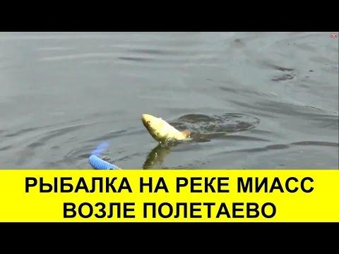 Рыболовная дуэль на реке Миасс возле Полетаево