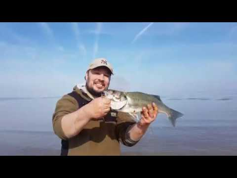 Bass and Plaice fishing on our local beach