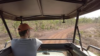 Jeep Safari At the Mole National Park In Ghana - AFRICA