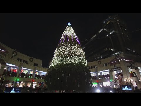 Faneuil Hall Holiday Spectacular: Tree Lighting