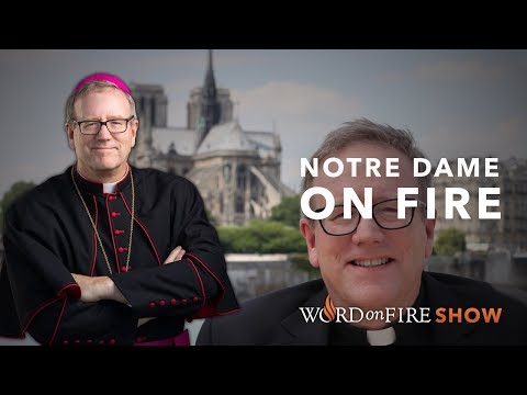 Bishop Barron on the Cathedral of Notre Dame Fire