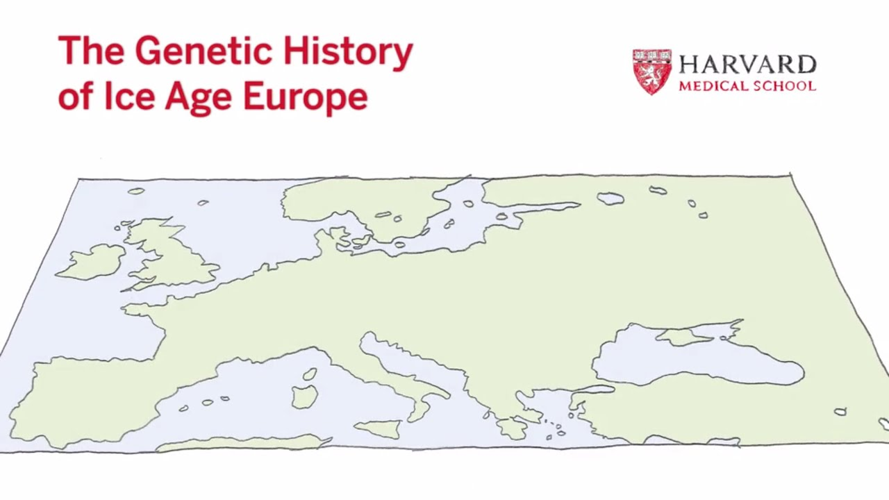 The genetic history of ice age europe youtube gumiabroncs Gallery