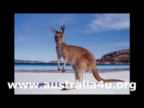 Study in Australia Bridgeagency Australia4u.org