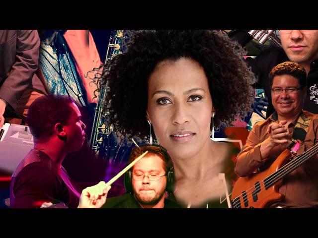 Diaspora Orchestra januari 2015 spotje