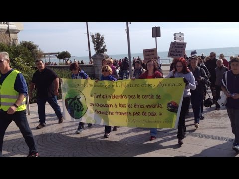 Manifestation des associations de protection animale