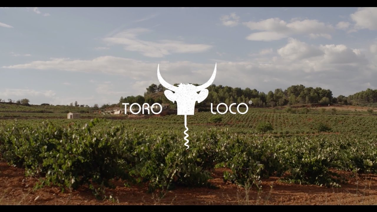 Meet Toro Loco® the great wine from Utiel-Requena, Spain