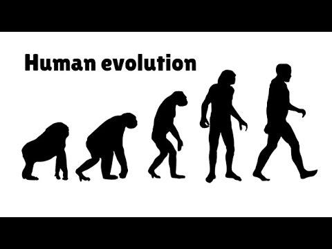 Human Evolution Timeline - Fact and Myth