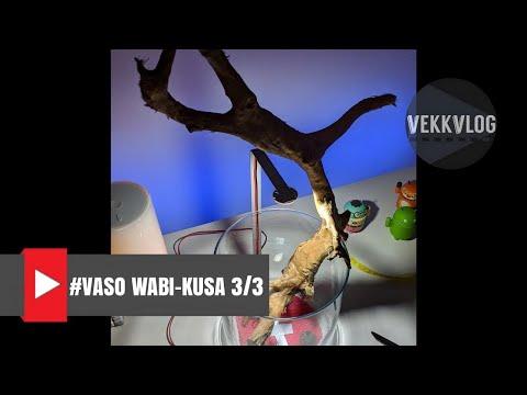diy-wabi-kusa-style-vase---technique---chapter-3-of-3