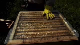 пчеловодство! Отбор рамок для откачки мёда