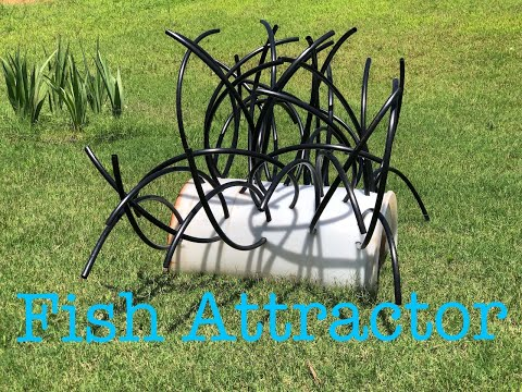 Building A CHEAP Fish Attractor