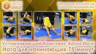 Успокаивающий Комплекс Хатха Йоги, Успокаивающая практика Хатха йоги при стрессах, йога релакс