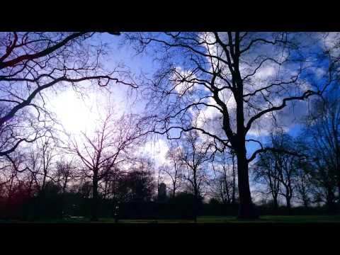 Hyde Park (Through My Eyes)