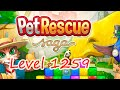 Pet Rescue Saga Level 1259 (NO BOOSTERS)