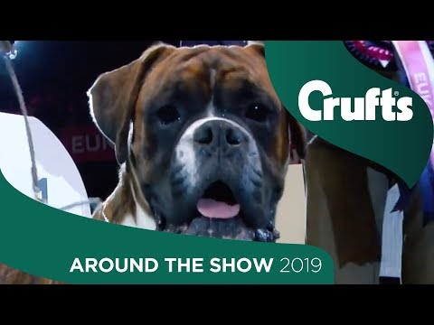 The Curtains Come Down For Another Year - Day 4 Highlights | Crufts 2019