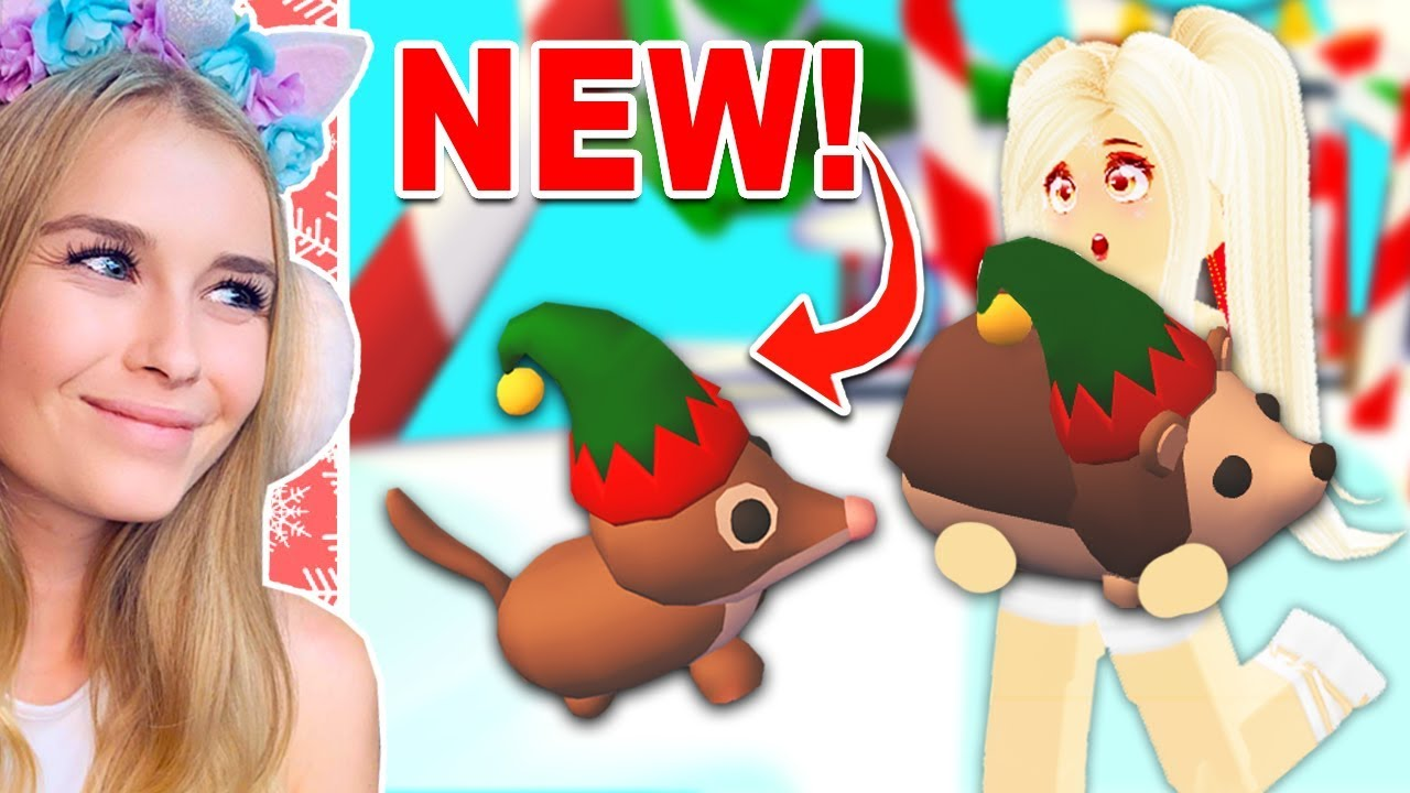 Roblox Elf Roblox Getting The New Elf Pets In Adopt Me Roblox Youtube