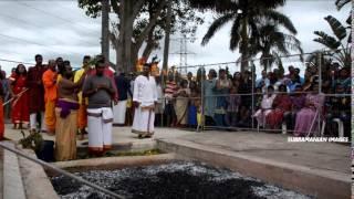 chatsworth siva alayam firewalking 2015 by samantha govender subramanian