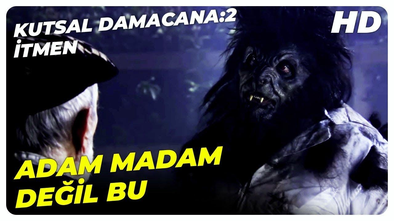 Kurt Adam, Fikret'in Peşinde | Kutsal Damacana: 2 İtmen Şafak Sezer Türk Komedi Filmi
