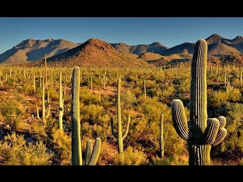 10 Best Tourist Attractions in Arizona Must Be Visited