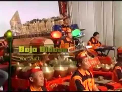 Bojo Bojoan