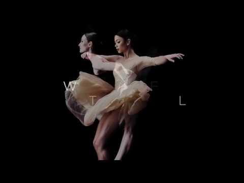 Nature's Care - The Australian Ballet - Digital Outdoor / Airport