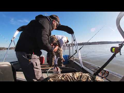 Catfish Tournament, Lake Wylie, Southeastern Club