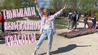 ВЛОГ День матери провела в цветах Добропарк vs Певчее поле