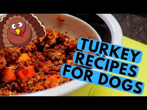 Easy Turkey Dog Recipe - Food and Treats
