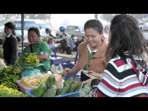 Organic Crops Help Small Farmers out of Poverty in Lao PDR