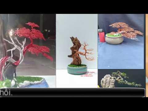 Dáng thế bonsai cơ bản Bonsai dây đồng handmade