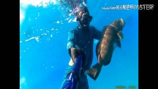 Sport Fishing Adventure