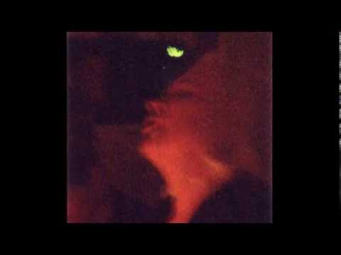 The Fairy Video (Interdimensional Communication)