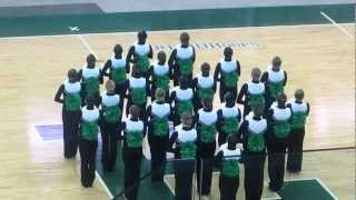 Michigan State Pom - Mid American Pom Collegiate State Championship 2013