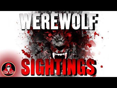 5 REAL Werewolf Sightings   NIGHTMARE FUEL