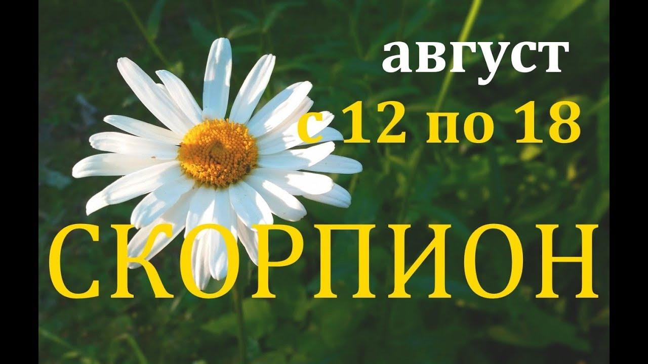 СКОРПИОНЫ. ТАРО-ПРОГНОЗ на НЕДЕЛЮ с 12 по 18 АВГУСТА . 2019 Г.