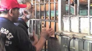 Trojan Horse visits Benguet Provincial Jail Philippines