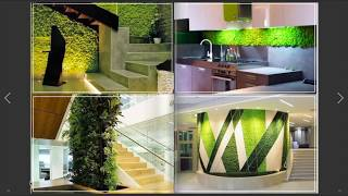 Preserved Plants for Interior Design - NEW Ideas!